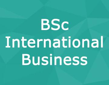 Brunel University – BSc International Business