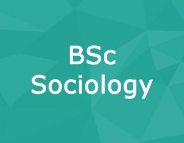 Brunel University – BSc Sociology